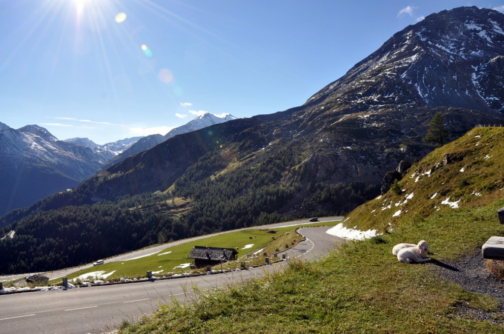 The Grossglockner High Alpine Road is an absolutely stunning toll road through some of the highest mountains in the Austrian Alps.