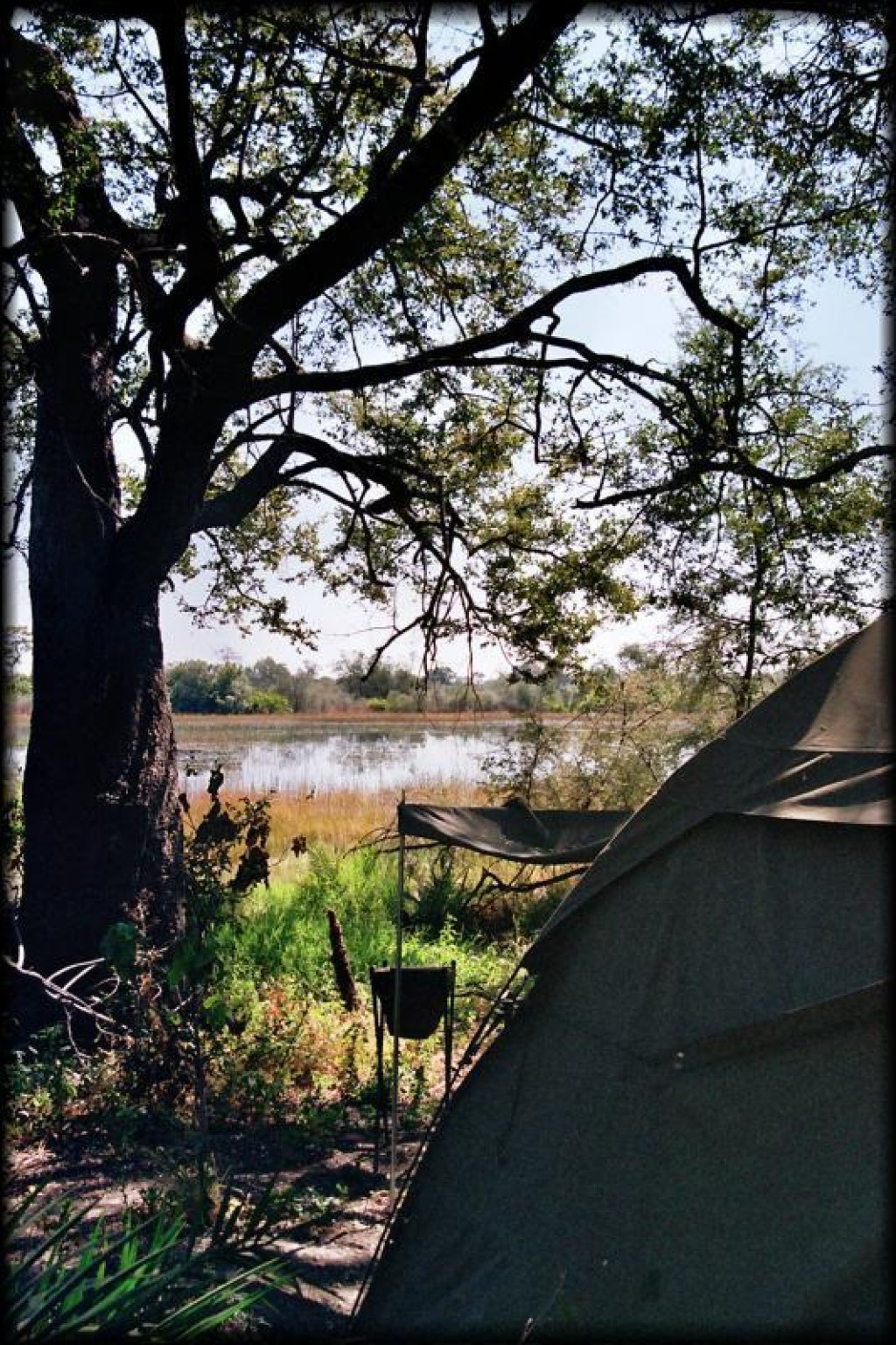 Our tent had a beautiful view of the Delta.