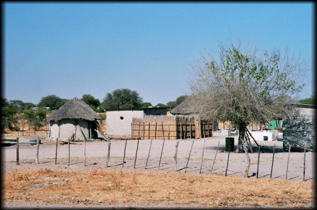 On our way out of the Kalahari, we passed this typical village.