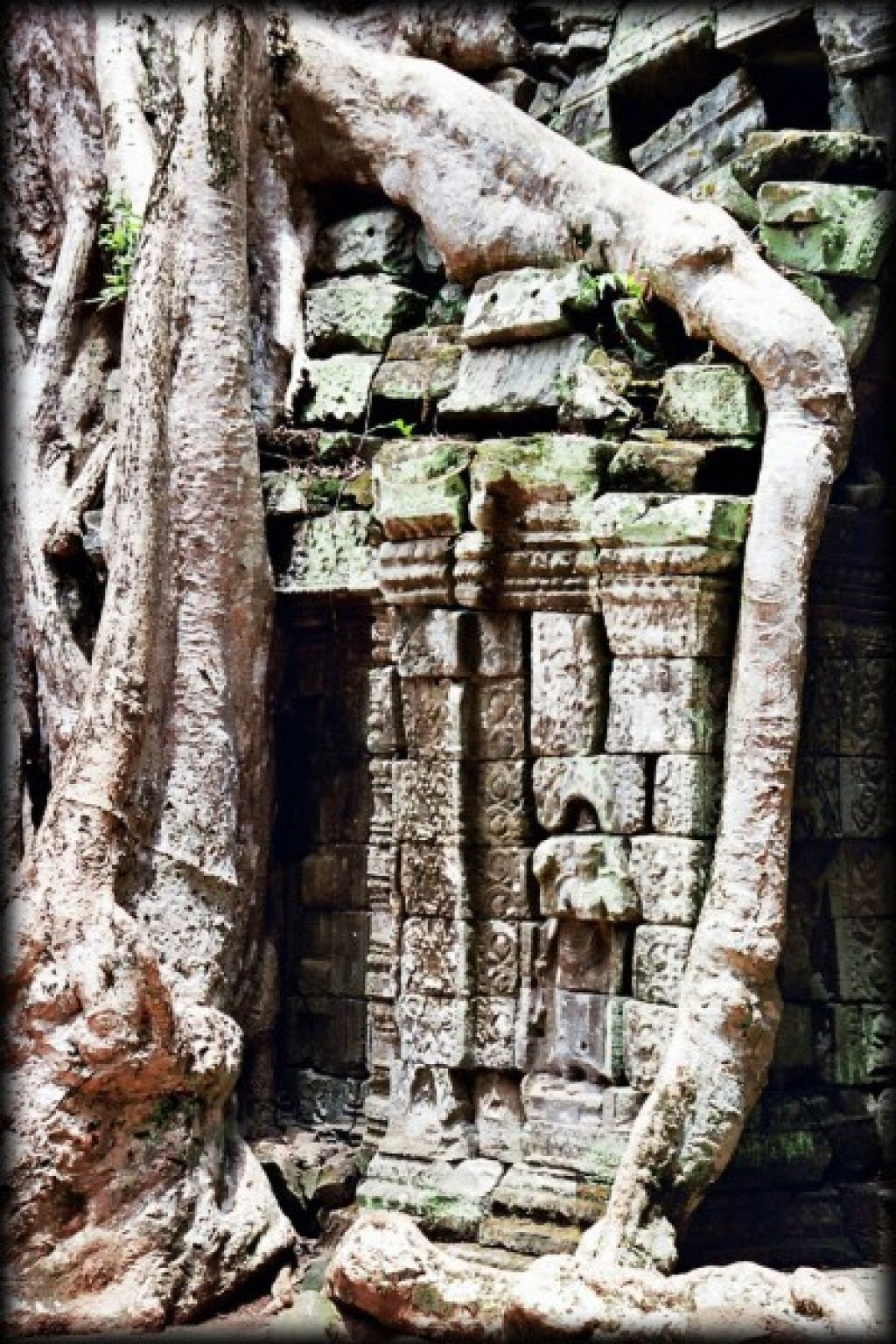 Ta Prohm was built as a Buddhist temple.  Our trusty Let's Go said that,