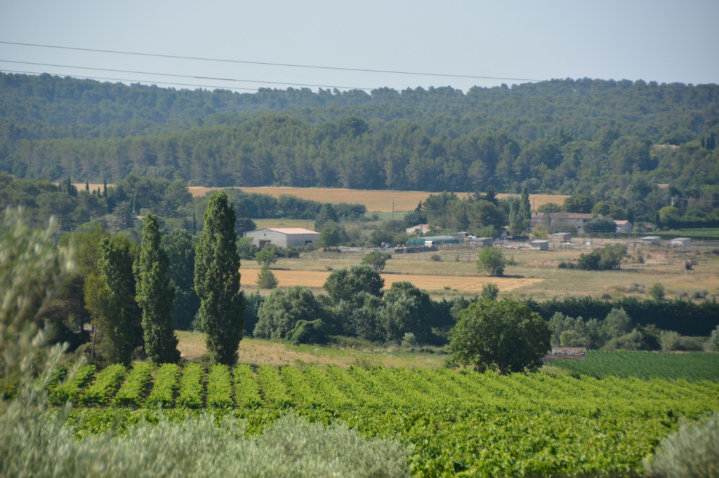Just north of Aix-en-Provence we went to a winery, inspired by the wine we'd had the previous evening at dinner.
