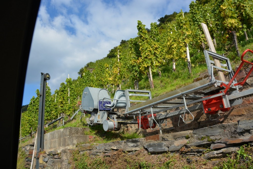 Automated machines to pick the grapes