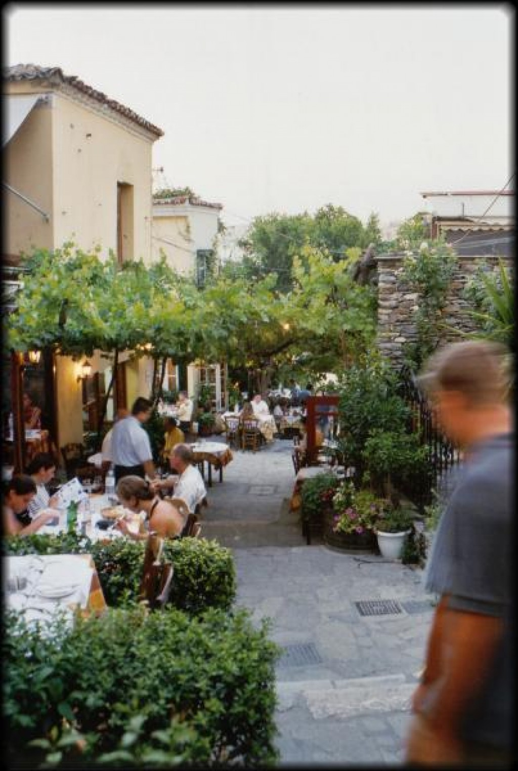 The Plaka district is packed with outdoor cafes and restaurants, here is a look down one of the pedestrian streets.