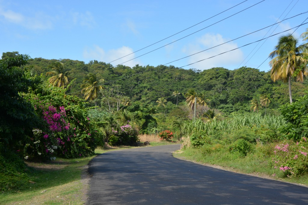 Grenada is a stunning island from one end to another. The roads are very good, and the traffic was easy.  From the beautiful coastal roads to the twisty road up and through the rain forest, we really enjoyed the couple of days we had driving around.