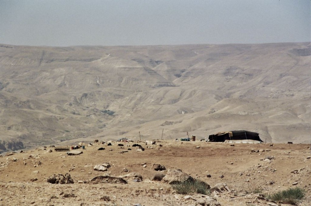 Bedouin Tent and goats in the desert