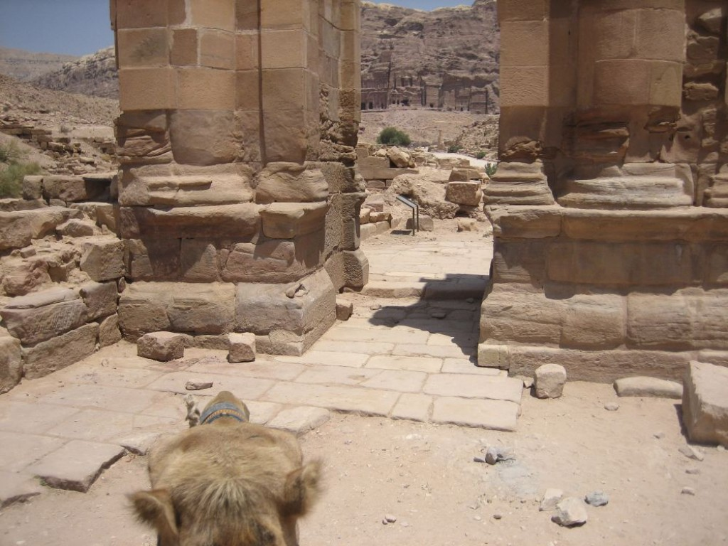 Camel view riding back to the Treasury crossing through the Temenos Gateway.