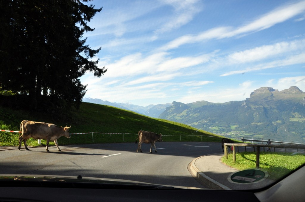 Rushour along the Malbun Vaduz highway