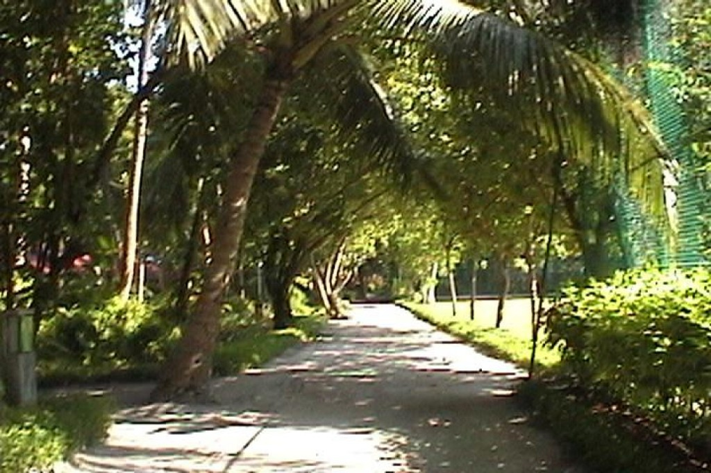 Another path.  Although there is a tennis court, they do not offer tennis.  We're not sure what they plan on doing with it.