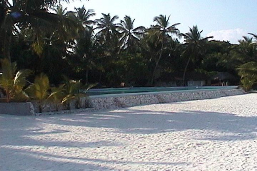 Here's a view of the pool from the beach. You can see how they've made it blend in to the club.  Thanks to the many palm trees, there is always at least some shade both on the deck and in the pool.