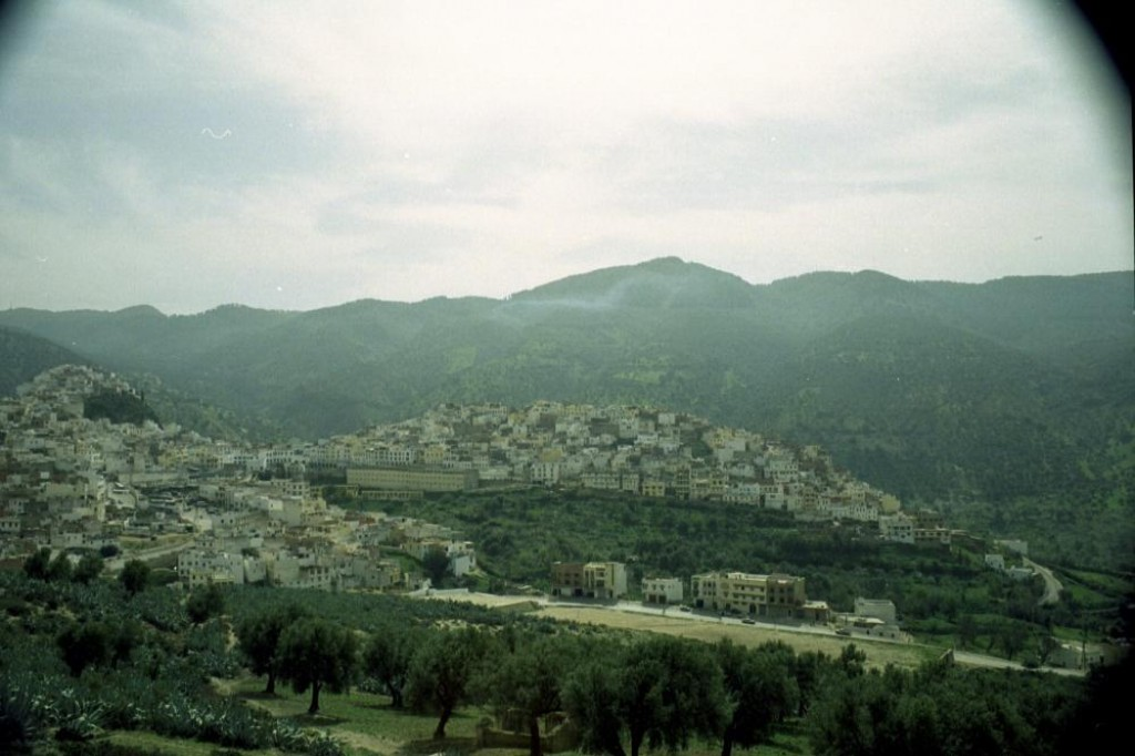 On our way back, here is a view of the city of Moulay Idriss, right next to the ruins.