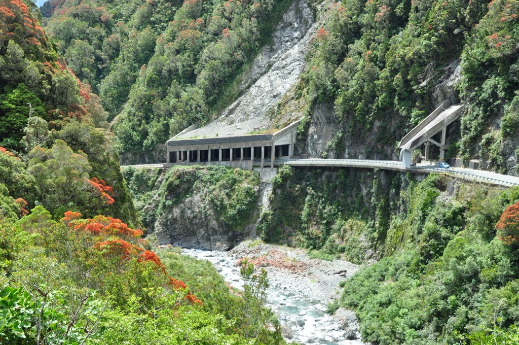 Flowering Rata bushes line the Otira Gorge Road - New Zealand Highway 73, Arthur's Pass National Park.