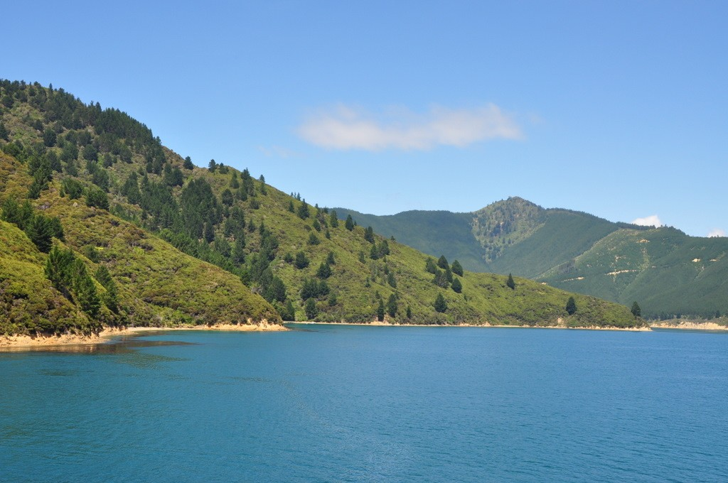 The ferry from Wellington to Picton (north to south islands) is a beautiful trip, especially in sunshine!