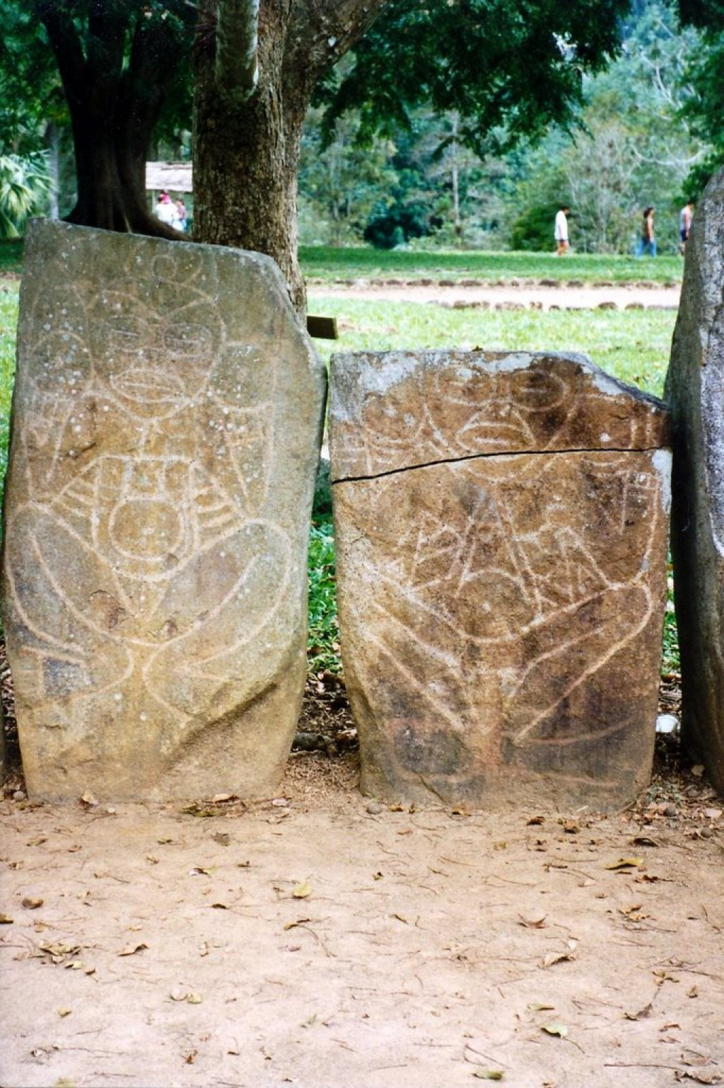 Taino Indians petroglyphs at the Caguna Indian Cermonial Park in Utuado