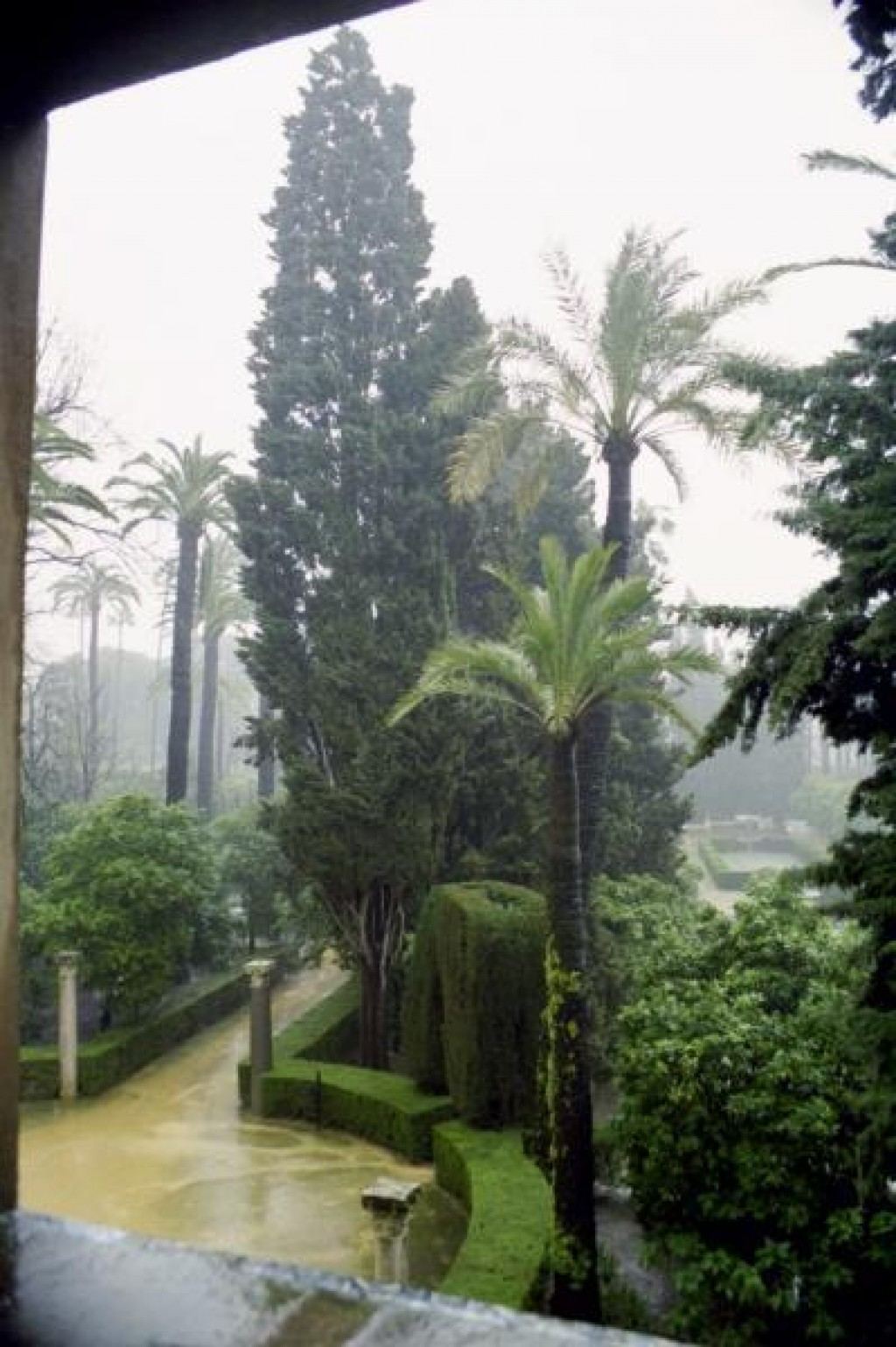 We arrived in Seville in pouring rain.  Unfortunately, it never stopped while we were there.