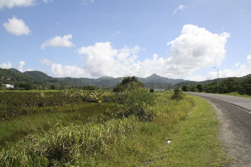 We went for a drive around the island. This is taken just outside of Rodney Bay.