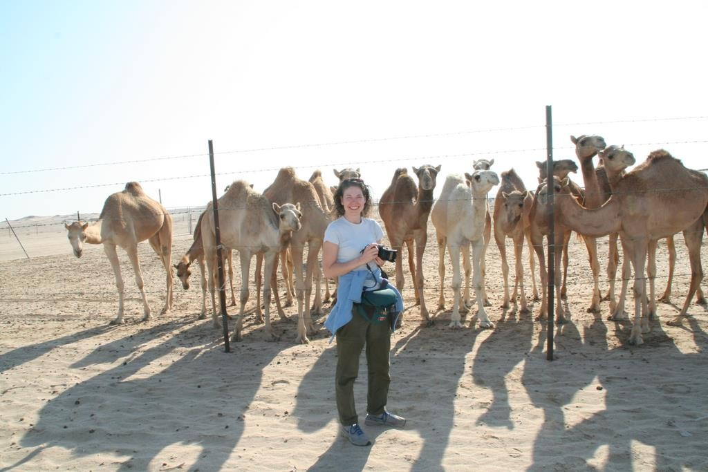 The camels were very well taken of - kind, gentle animals, not the mean, kicking beasts we've seen elsewhere.