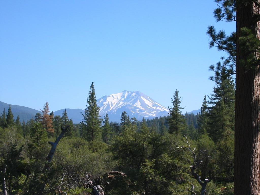 Our first view of Shasta. It's pretty awesome.