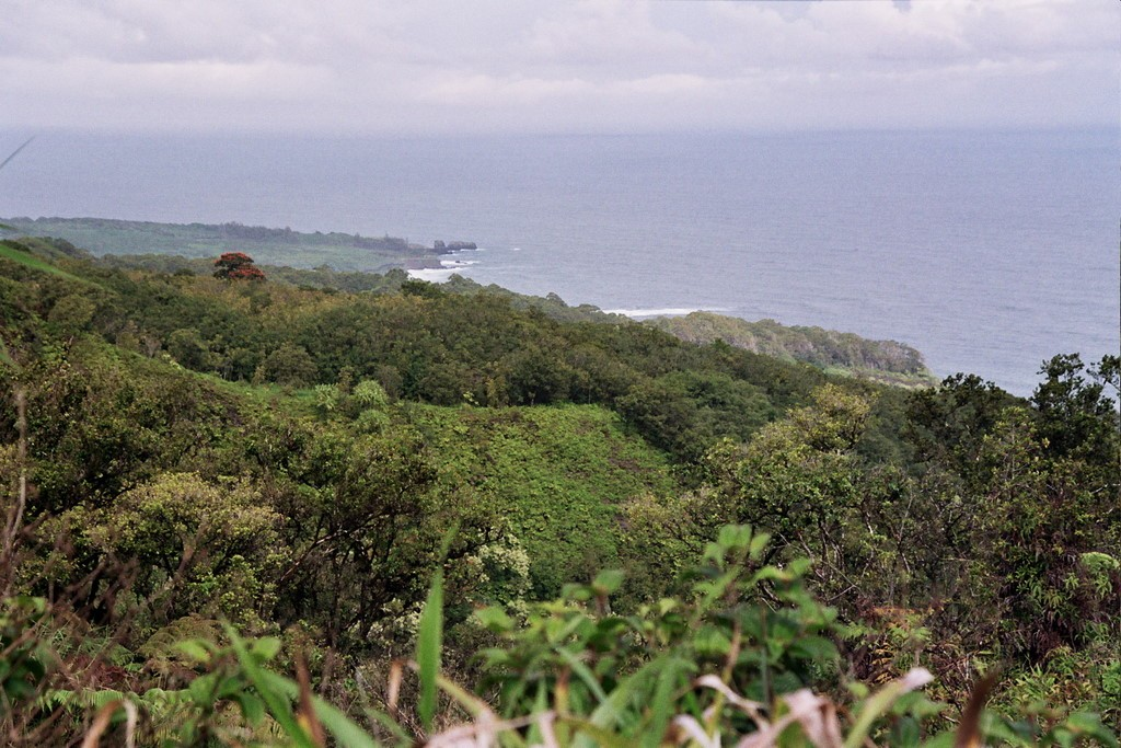 We drove to Hana, and spent a night there before driving back.  The weather didn't cooperate, however.