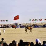 International Festival of the Sahara