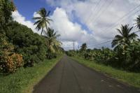 The only straight road in Dominica