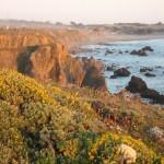 sonoma-coast-rocks