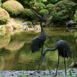 The Strolling Pond Garden