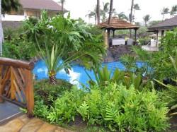 Beautiful pool at the Sheraton Maui
