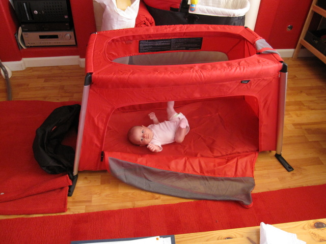 Phil Ted Travel Cot Review