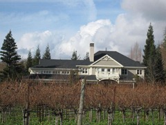 Beautiful Duckhorn Vineyard, Napa Valley, California