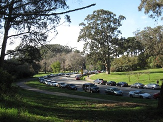 Street parking in Golden Gate Park, San Francisco