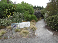 The entrance to the wetland next to the cellar door/tasting room at Grove Mill, a Marlborough winery.