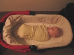 Asleep in the UPPAbaby Vista bassinet.