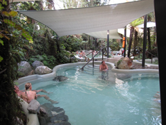 The main public pools at Glacier Hot Pools, Franz Josef, are nestled into a wooded area and shaded with large tarpaulins.