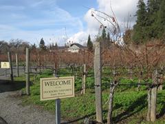 Winetasting at Duckhorn Vineyards Estate Winery