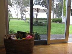 A basket of toys keeps kids busy while the adults taste the delightful wine at Cloudy Bay Vineyards, Marlborough.