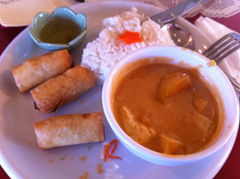 Pumpkin Curry and Vegetarian Eggrolls disappoint at Thai Cuisine restaurant.  (There was a fourth egg roll included in the serving).