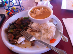 Eggplant and Beef and Pumpkin Curry with Chicken were a let down at Thai Cuisine Restaurant.