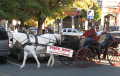 Holiday travel with kids in Wine Country?  Take a free carriage ride in Railroad Square, Santa Rosa!