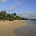 Martinique-11-Les-Salines-Beach.jpg