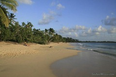 The beautiful beach at Les Salines - a perfect place to enjoy the French meets West Indies vibe of Martinique.