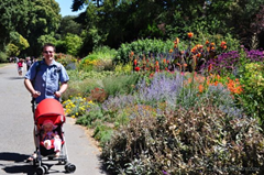 Enjoying the Botanic Gardens in Christchurch, New Zealand from the comfort of the UppaBaby G-Lite umbrella stroller.