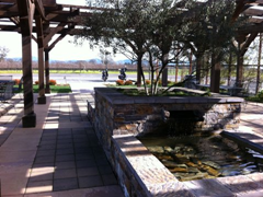 The lovely, tranquil patio at Balletto Winery is centered on an olive tree growing in a large water feature.