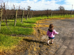Going for a run amongst the grape vines at Balletto Winery.  Traveling with kids?  Don't rule out wine tasting for family travel!