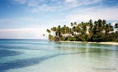Sparkling turquoise water, white sand and swaying palm trees - a typical Puerto Rico beach!