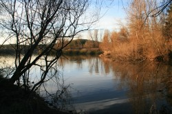 Spring Lake, Santa Rosa