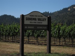 Sonoma County - real Wine Country