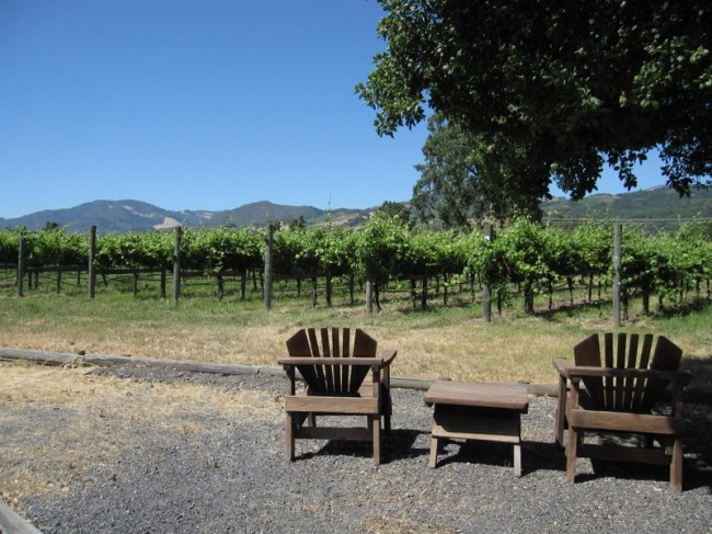Sit back and relax with beautiful views of the vineyards and mountains.
